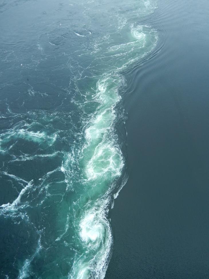 Le Maelstrom de Saltraumen, le courant marin le plus puissant au monde